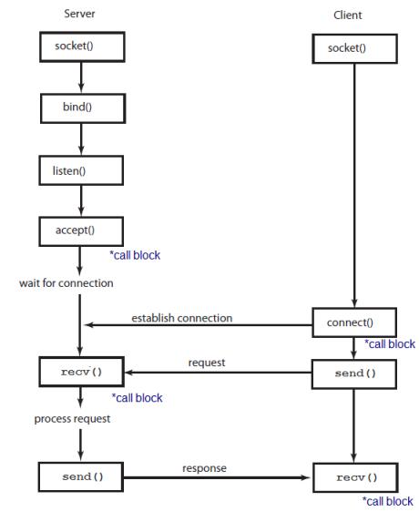 c   tutorial  sockets - server  u0026 client